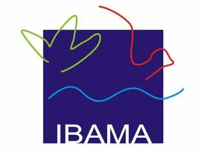 Torneio clandestino de canto de pássaros é interditado pelo IBAMA em São Paulo