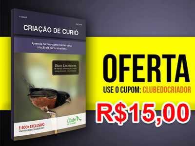 OFERTA!!! E-book Criação de Curió - Oferta